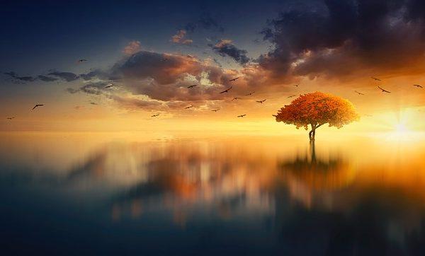 Sunrise Over Misty Water